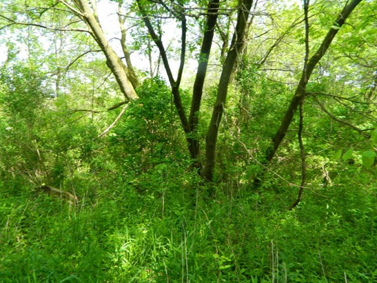 Build-able 36.78 acre lot (photo 5)