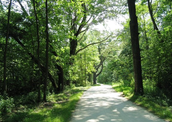 Summer Private Road (photo 3)