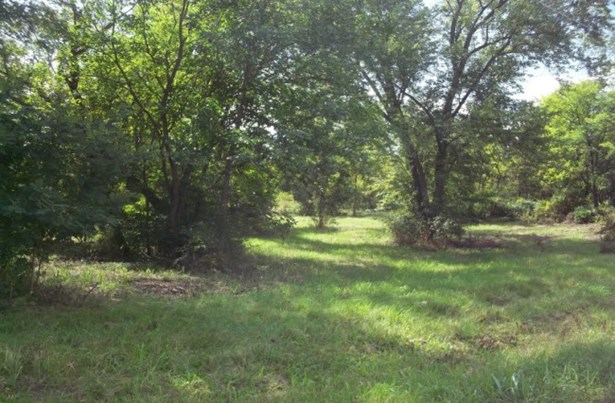 Lightly wooded location (photo 2)