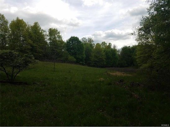 Land - Goshen, NY (photo 1)