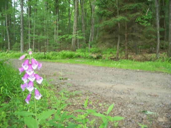 Land - Glen Spey, NY (photo 5)