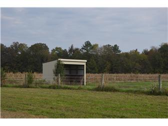 Lot 6 Cedar Grove Church Rd, Felton, DE - USA (photo 4)
