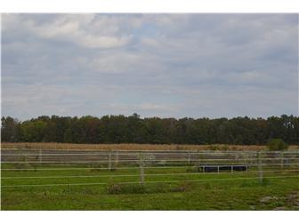 Lot 6 Cedar Grove Church Rd, Felton, DE - USA (photo 5)