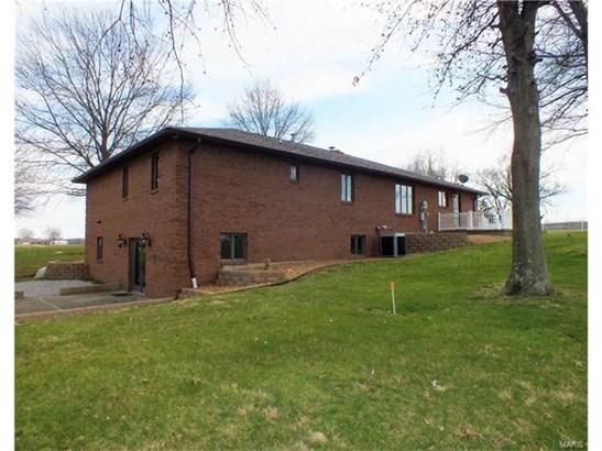 5645 State Route 159, Smithton, IL - USA (photo 3)