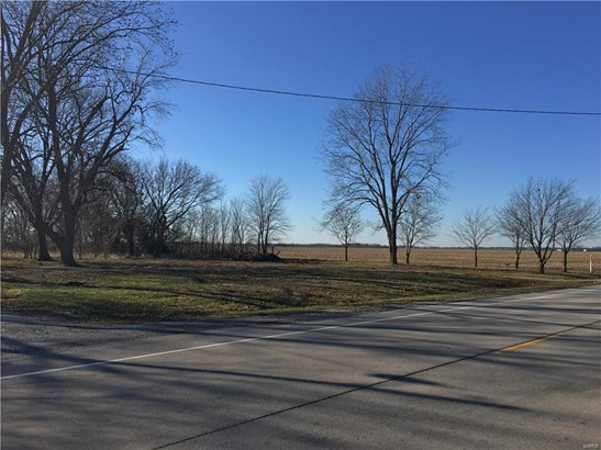 11412 State Route 177, Okawville, IL - USA (photo 2)