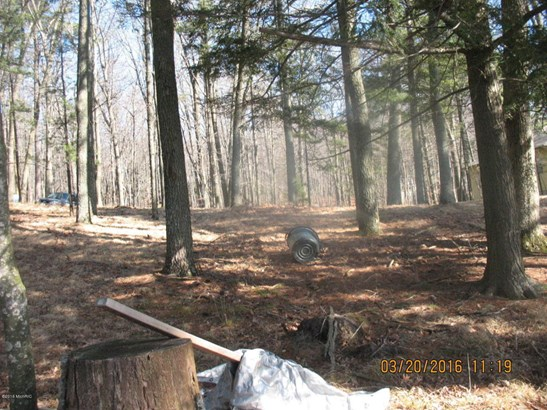 Acreage - Free Soil, MI (photo 4)