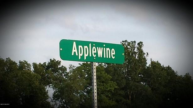 Lot - Middleville, MI (photo 1)