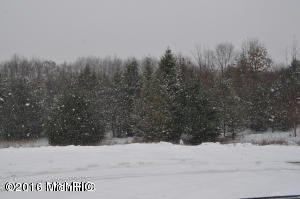 Acreage - Greenville, MI (photo 1)