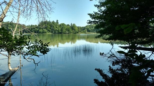 Acreage - Cedar Springs, MI (photo 4)