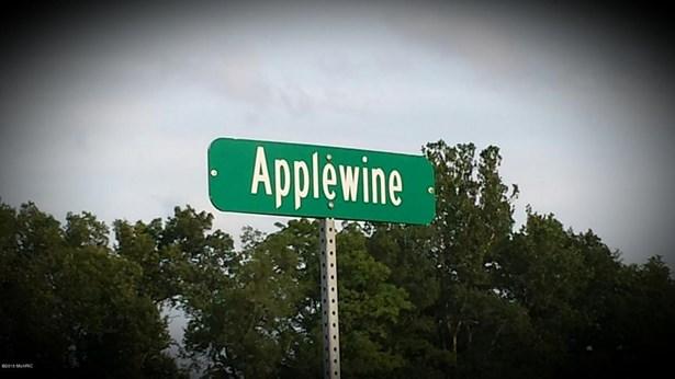Lot - Middleville, MI (photo 2)