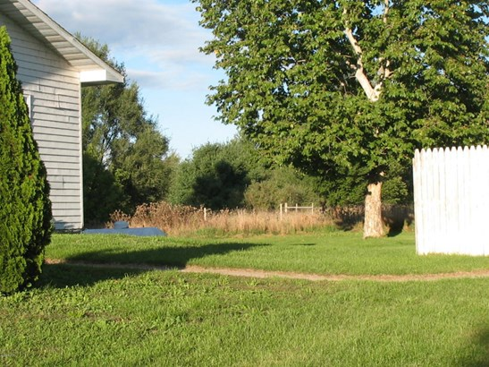 Single Family Residence, Ranch - Edmore, MI (photo 3)