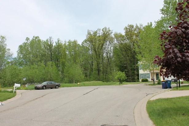 Lot - Grand Rapids, MI (photo 2)