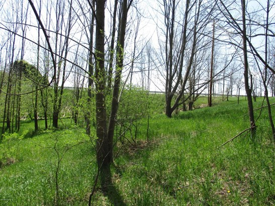 Lot - Scottville, MI (photo 3)