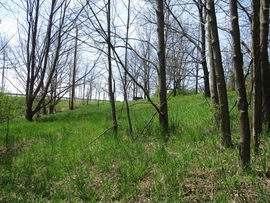 Lot - Scottville, MI (photo 4)