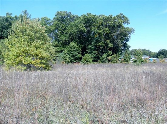 Commercial Land - Muskegon, MI (photo 2)
