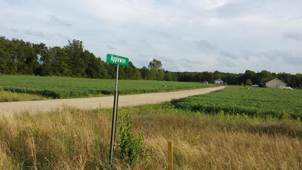 Lot - Middleville, MI (photo 4)