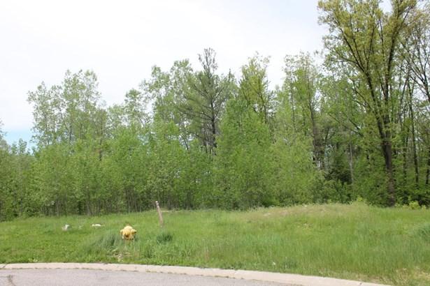 Lot - Grand Rapids, MI (photo 1)