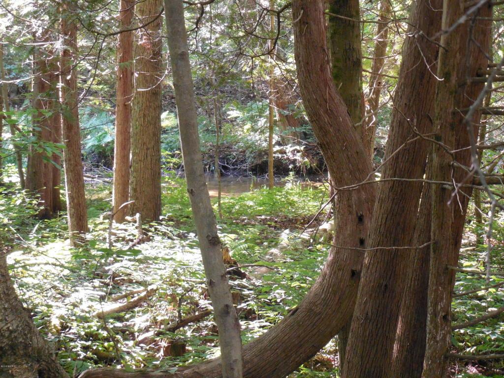 Acreage - Custer, MI (photo 3)