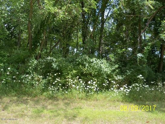 Lot - Shelbyville, MI (photo 3)