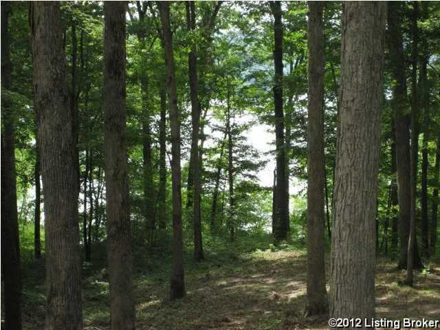 Residential Land - Clarkson, KY (photo 1)