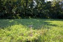 Residential Land - Milton, KY (photo 1)