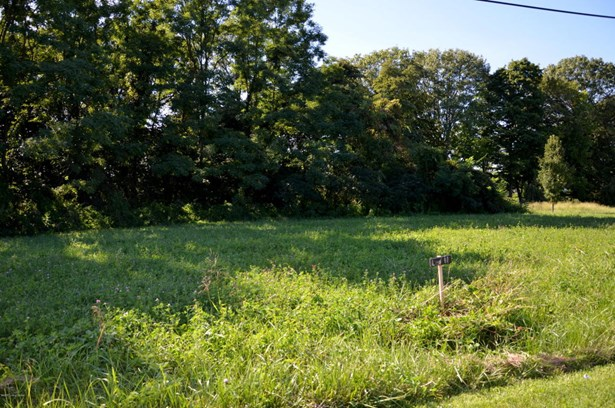 Residential Land - Milton, KY (photo 2)