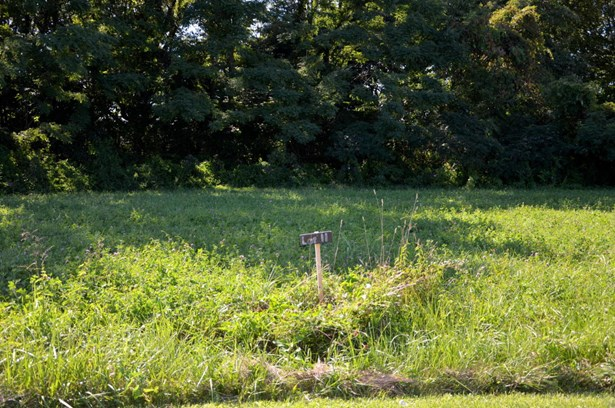 Residential Land - Milton, KY (photo 3)