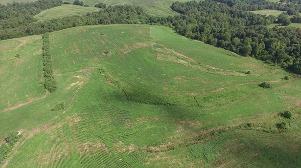 Residential Land - Harned, KY (photo 3)