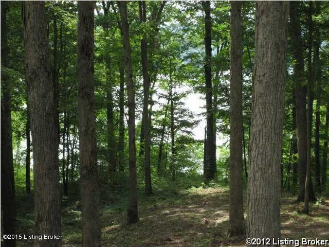 Residential Land - Clarkson, KY (photo 2)