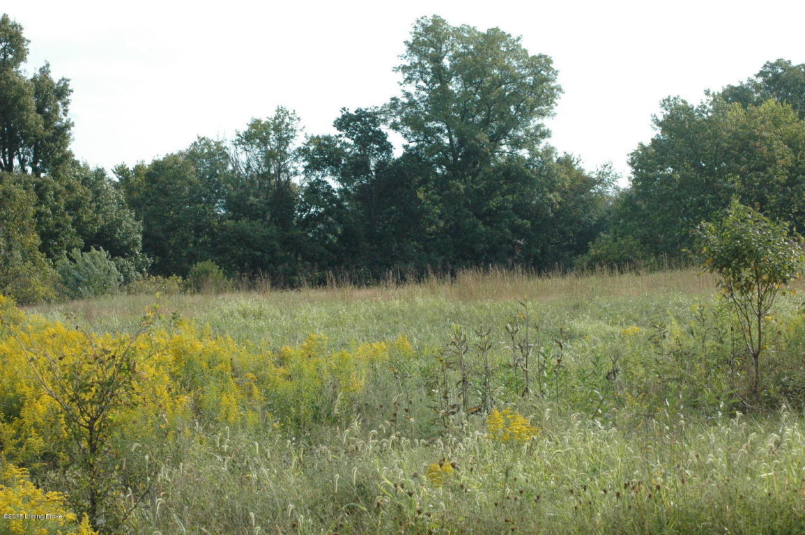 Residential Land - Shelbyville, KY (photo 2)