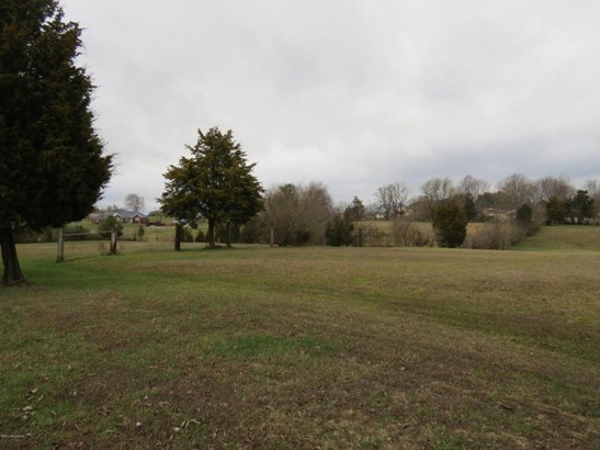 Residential Land - Mt Washington, KY (photo 5)