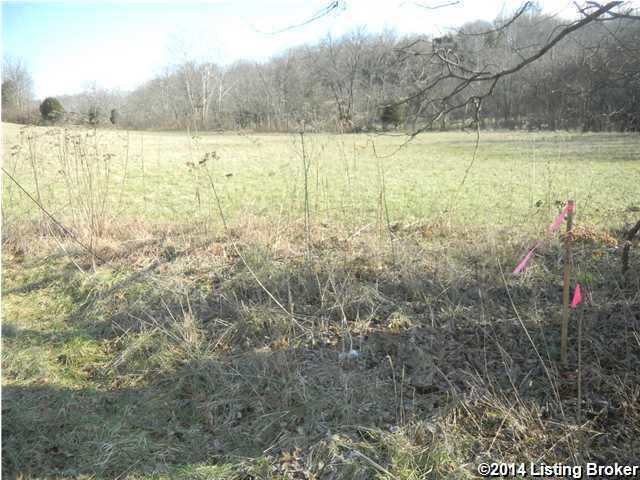 Farm, Other - Westport, KY (photo 4)