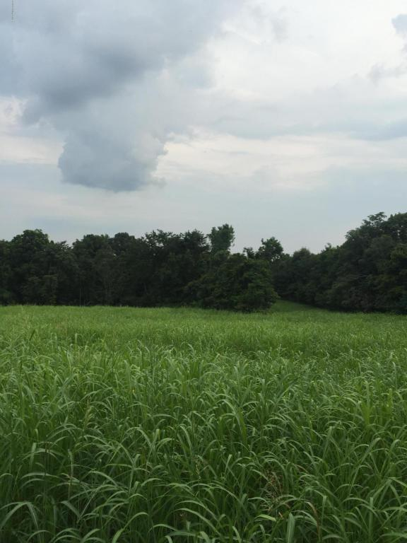 Farm, Other - Milton, KY (photo 5)