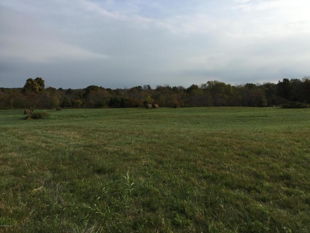 Residential Land - Taylorsville, KY (photo 2)
