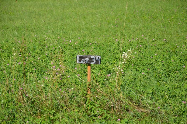 Residential Land - Milton, KY (photo 4)