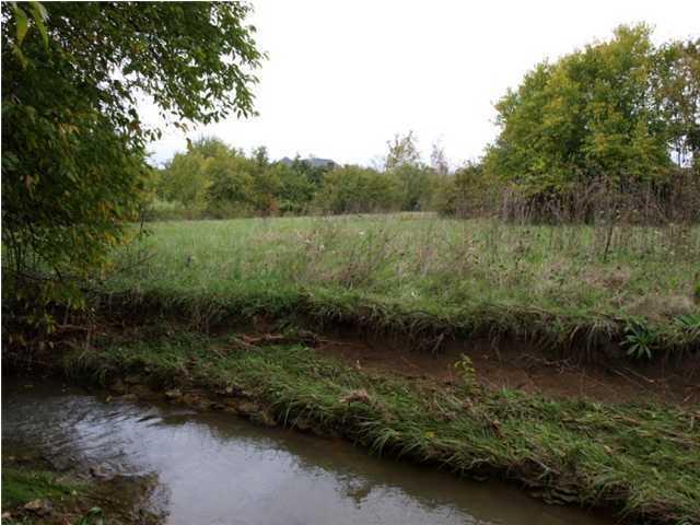 Residential Land - Smithfield, KY (photo 5)