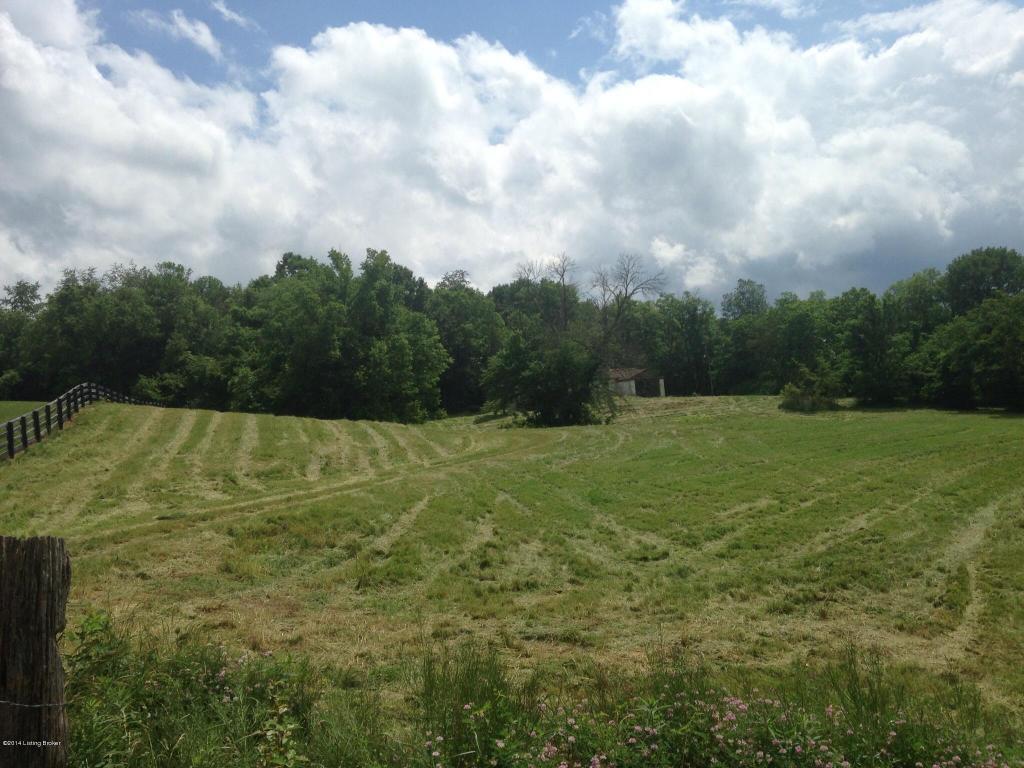 Farm - La Grange, KY (photo 3)