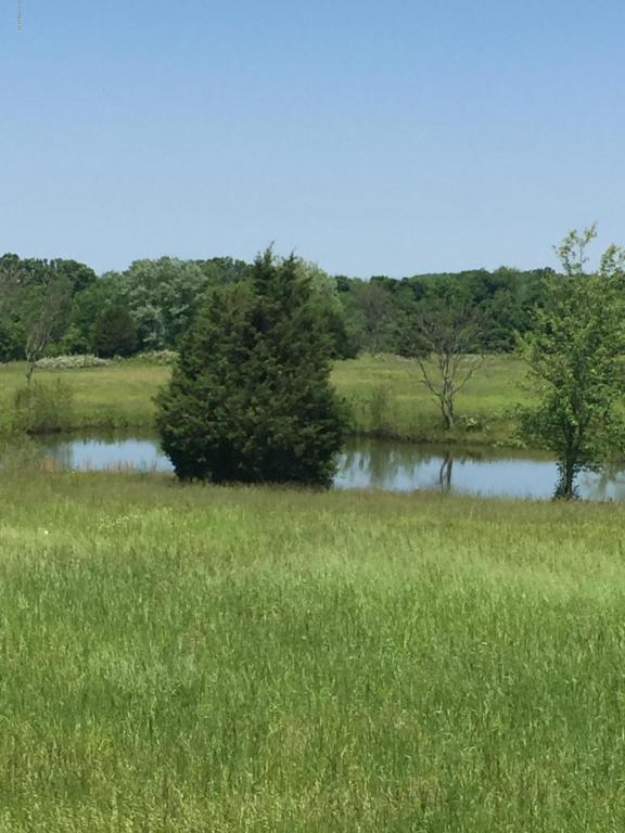 Farm - La Grange, KY (photo 4)