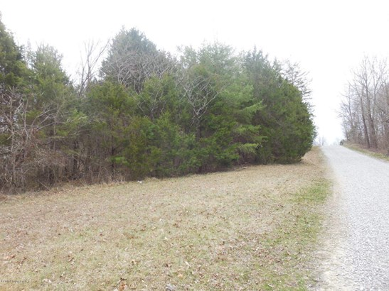 Residential Land - Clarkson, KY (photo 5)