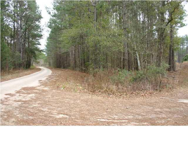6323  Highway 17 , Awendaw, SC - USA (photo 4)