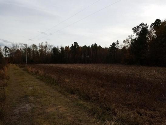 1  Corners Lane, Branchville, SC - USA (photo 2)
