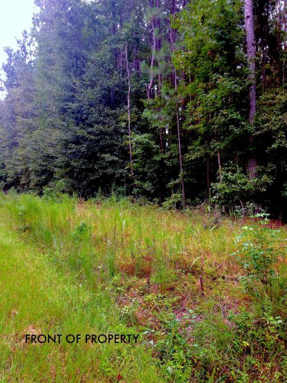 0  Campbell Thickett Road, Ridgeville, SC - USA (photo 1)