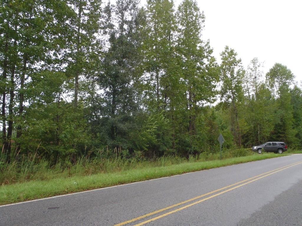 0  Campbell Thickett Road, Ridgeville, SC - USA (photo 3)