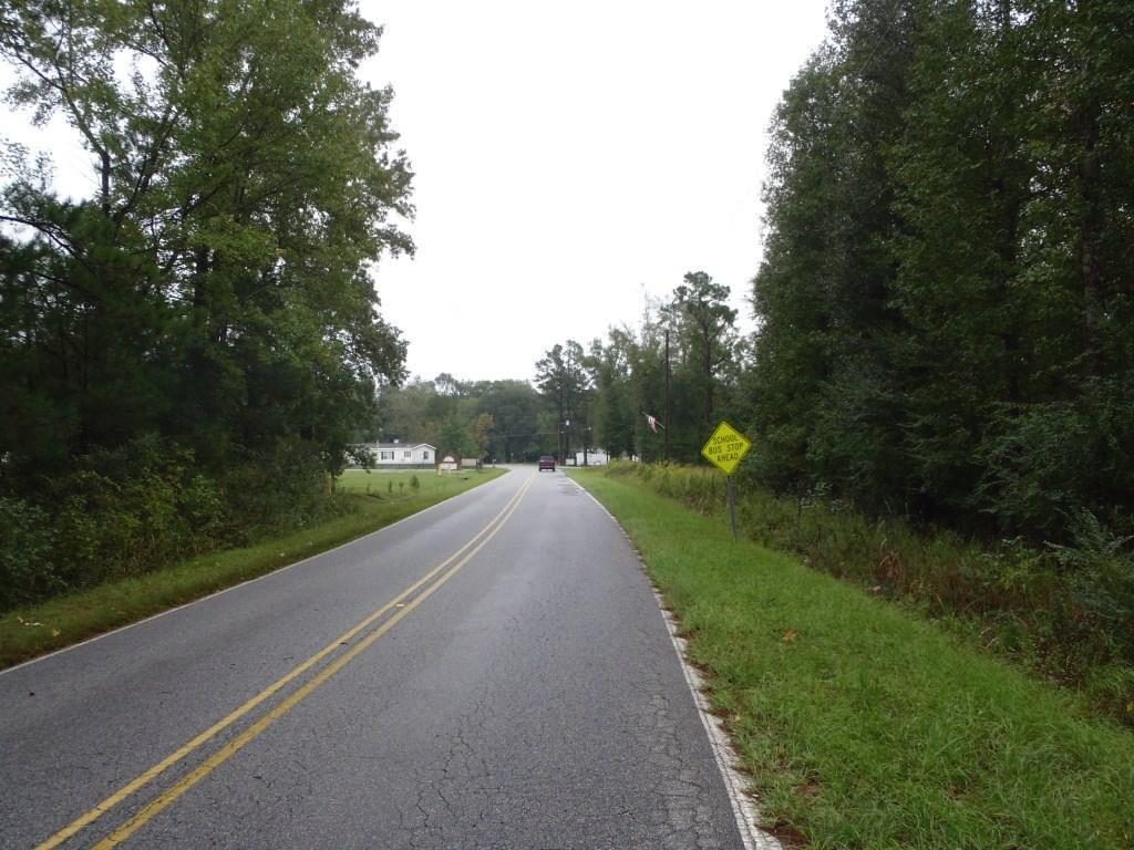 0  Campbell Thickett Road, Ridgeville, SC - USA (photo 4)