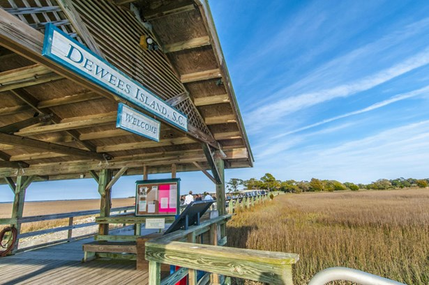 263  Pelican Flight Drive, Dewees Island, SC - USA (photo 5)