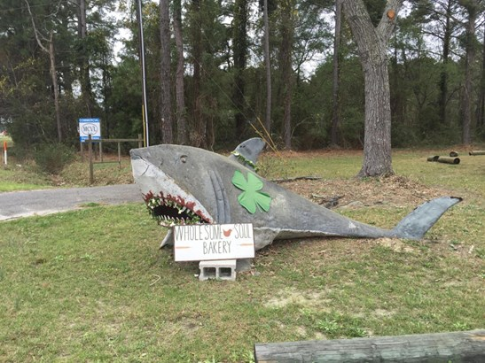 9990 N Highway 17 , Mcclellanville, SC - USA (photo 5)