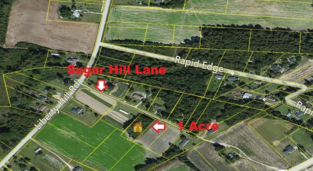 1  Sugar Hill Lane, Summerton, SC - USA (photo 1)