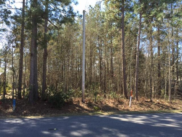 216  General Moultrie Drive, Bonneau, SC - USA (photo 1)