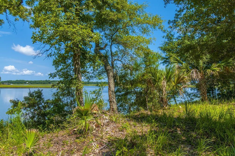 14  Glascow Island Lane, Edisto Island, SC - USA (photo 4)