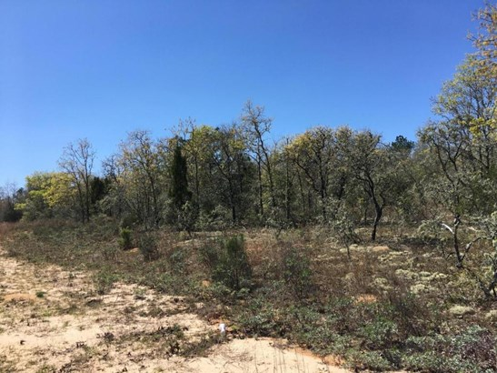 Residential Lots - Alford, FL (photo 3)